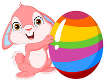 Cute bunny Easter Stock Images