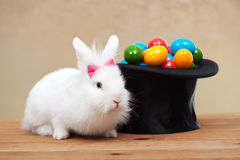 Cute bunny with easter eggs Stock Photos
