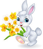 Cute bunny holding beautiful flower Stock Photos