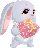 Cute bunny holding a box with gifts Royalty Free Stock Images