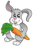 Cute bunny holding carrot Stock Photos