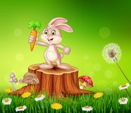 Cute bunny holding carrot on tree stump in summer season background Stock Photo