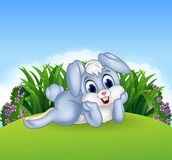Cute bunny lie down in the jungle Royalty Free Stock Photography