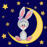 Cute Bunny on the moon Royalty Free Stock Photography