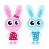 Cute bunny rabbit blue, pink Stock Photography