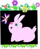 Cute Bunny Rabbit Flower Box Stock Image