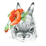 Cute Bunny. Rabbit pencil sketch illustration. T-shirt print with cute Bunny. Stock Photography
