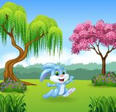 Cute bunny running in the jungle Royalty Free Stock Image