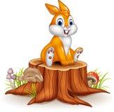 Cute bunny sitting on tree stump Royalty Free Stock Photography
