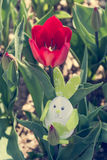 Cute bunny toy hidding among red tulips. Royalty Free Stock Images