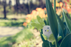 Cute bunny toy hidding among tulips. Stock Photos