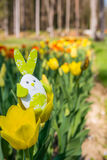 Cute bunny toy hidding among yellow tulips. Stock Photo