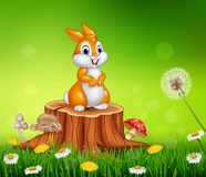 Cute bunny on tree stump grass background Stock Photography