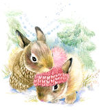 Cute bunny in winter forest. Cute rabbit  watercolor drawing. Bunny illustration for Christmas greetings card Royalty Free Stock Photo