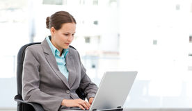 Cute businesswoman working on the laptop Royalty Free Stock Image