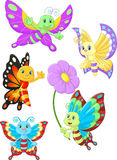 Cute butterfly cartoon collection set Royalty Free Stock Photo