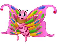 Cute butterfly cartoon Royalty Free Stock Image