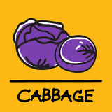 Cute cabbage hand-drawn style, vector illustration. Cute cabbage hand-drawn style,drawing,hand drawn vector illustration Royalty Free Stock Photo