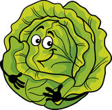 Cute cabbage vegetable cartoon illustration. Cartoon Illustration of Funny Comic Green Cabbage or Lettuce Vegetable Food Character Royalty Free Stock Photos