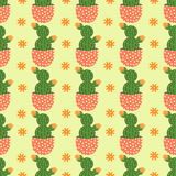Cute cacti, flowerpots. Seamless pattern with cute cacti. Nature,spring. Cute illustration. Stock Image