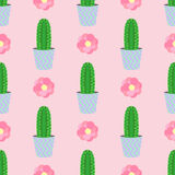Cute cacti, flowerpots. Seamless pattern with cute cacti. Nature,spring. Cute illustration. Stock Photography