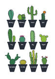 Cute cactus set Stock Photography