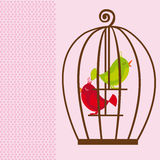 Cute cage birds Royalty Free Stock Photo