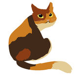 Cute calico cat vector illustration Royalty Free Stock Photo