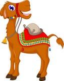 Cute camel cartoon Stock Images