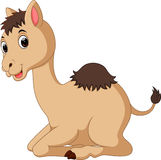 Cute camel cartoon Royalty Free Stock Images