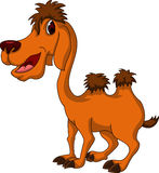 Cute camel cartoon for you design Stock Photo