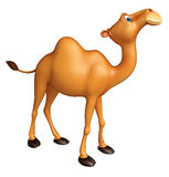 Cute Camel funny cartoon character Royalty Free Stock Photos