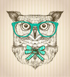 Cute card with hand drawn hipster owl dressed in green glasses. Stock Photography
