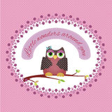 Cute card with owl Stock Image
