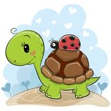 Cute Cartonn Turtle with ladybug. On the meadow royalty free illustration