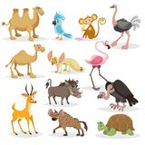 Cute cartoon african animals set. Dromedary and bactrian camels, parrot, monkey, ostrich, fennec fox, flamingo, warthog, vulture,. Cute cartoon african animals vector illustration