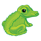 Cute cartoon alligator on white background Royalty Free Stock Photography
