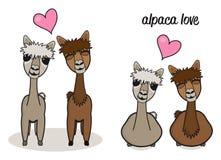 Cute cartoon alpaca couple in love illustration. Vector Royalty Free Stock Photos