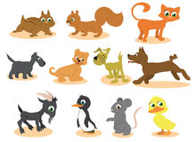 Cute cartoon animals vector. Illustrated animals vector. Cat dogs squirrel chipmunk mouse penguin goat and duckling Royalty Free Stock Photos