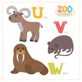 Cute cartoon animals. Zoo alphabet with funny animals. U, v, w l Royalty Free Stock Image