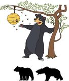 Cute cartoon bear cub with honey and bees. Stock Images