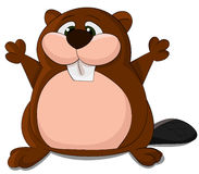 Cute cartoon  beaver. Royalty Free Stock Photography