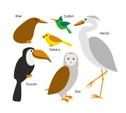 Cute cartoon bird set  on white background. Stock Photography