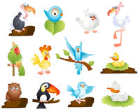 Cute Cartoon Birds Royalty Free Stock Images