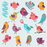 Cute cartoon birds set Royalty Free Stock Photo