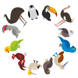 Cute Cartoon birds set - gannet penguin ostrich toucan parrot eagle booby cock, round frame on white background, card design, bann Stock Image