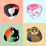 Cute cartoon birds, set Stock Photo