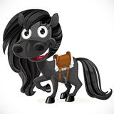 Cute cartoon black baby horse Royalty Free Stock Photography