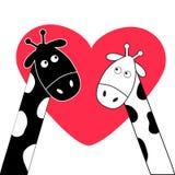 Cute cartoon black white giraffe boy and girl Big heart. Stock Photo
