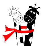 Cute cartoon black white giraffe wearing red scarf. Boy girl couple. Camelopard on date. Long neck. Funny character set. Happy fam Royalty Free Stock Photos